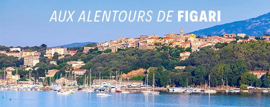 Visiter la Corse depuis Figari